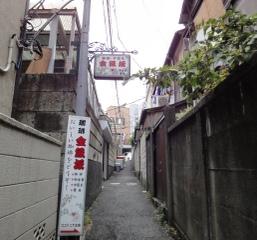 110705kikuzaka