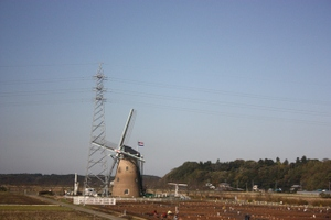 09111603windmill