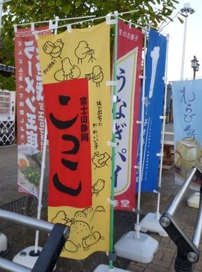 10110807ashigarasa