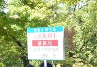 10111401kofukuji