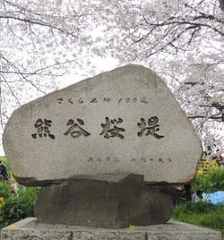 160404kumagaya1_2